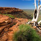 Central Australian Highlights by Steven Pearce