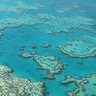 Great Barrier Reef by Richard Cassar