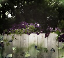 Climbing the Fence by ecannon11