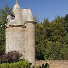 Trelissick Tower by Paul Woloschuk