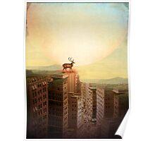 Deer at Dawn Poster