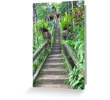 Steps, Steps, & more Steps. Paronella Park, Innisfail.Que. Greeting Card