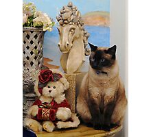 Bella and the Cottage bear Photographic Print