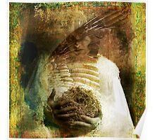 The Bird Madonna Poster
