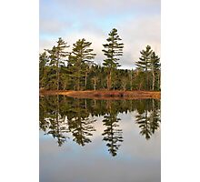 Autumn Reflector Photographic Print