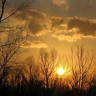 Golden Sunset by DottieDees