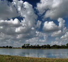 Blue Sky, Punta Gorda, FL by LudaNayvelt