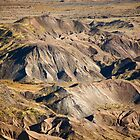 Mount St. Hellens Landscapes Study by Olga Zvereva