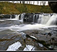 Aysgarth falls, Yorkshire Dales by Shaun Whiteman