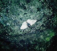 Butterfly Funeral Attended by Maggots by Dennis Blauer