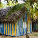 Beach Hut by Igor Janicijevic