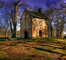 The Little House. by Tony Wilkinson