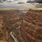 Owyhee Canyon Lands, Bruneau Canyon  by Albert Dickson