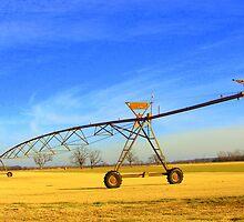 Farmlands in Oklahoma by Ronee van Deemter