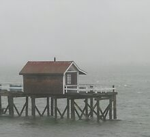 Maine Boathouse in Storm by Patty Gross