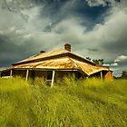 My Green Grass Skirt by David Haworth