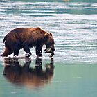 Kodiak Bear Sow with a Pink Salmon. by Albert Dickson