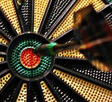 Bullseye! by Tracy DeVore
