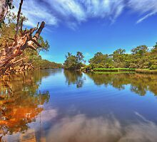 Swan River reflections by Claire  Farley