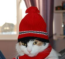Cat Scarf hat by Paul Loveday