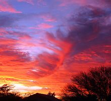 Arizona Sunset 3 by Chelsea Brewer