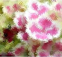 Hydrangea Abstract by Deborah  Benoit