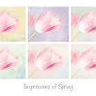 Impressions of Spring by Marilyn Cornwell