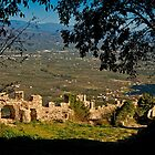 The view from the citadel of Mystras by Konstantinos Arvanitopoulos