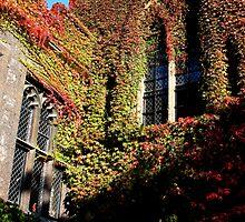 Deans Yard Westminster Abbey by Bonnie Blanton