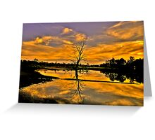 Wetland Dreaming - Wonga Wetlands, Albury NSW - The HDR Experience Greeting Card