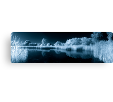 Wetland Pond in IR Canvas Print