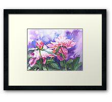 Sunlit Paeonies Framed Print