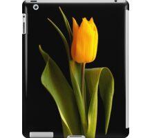 Single yellow tulip against black background iPad Case/Skin