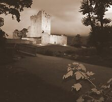 Ross Castle by John Quinn