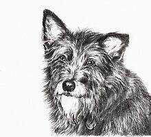 Terrier by L K Southward