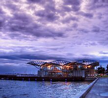 The Carousel at the Geelong Waterfront by Christine Smith