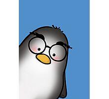 Eyebrow Penguin Photographic Print
