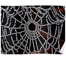 JACK FROST CAUGHT  IN A SPIDERS WEB  Poster