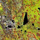 Google Earth by Marguerite Foxon