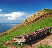 Farm in Azores islands by Gaspar Avila