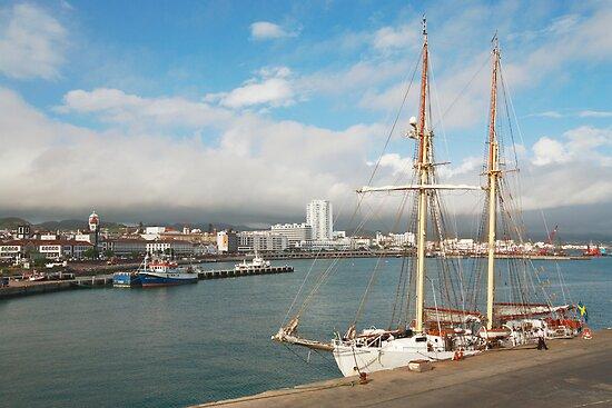 HMS Falken by Gaspar Avila