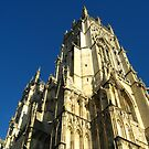 York Minster 2 by Ashley W