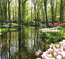 The Lake - Keukenhof Gardens, Holland by BlueMoonRose
