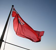 Flag in sunny breeze by lizh467