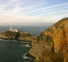 South Stack by Bev Evans