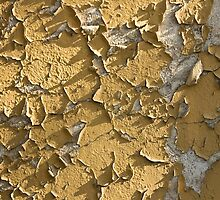 peeling wall by dominiquelandau