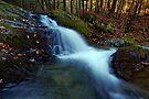 Small Falls Along Sherman Hollow Brook by Stephen Beattie