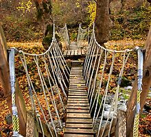 """Autumnal crossing on the """"Path of Love"""" by Hercules Milas"""