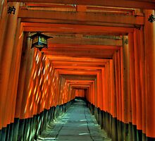 Fushimi Inari Torii Gates by Jackson Chu