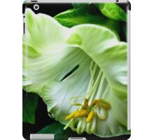 Gardens on the Bay Singapore iPad Case/Skin